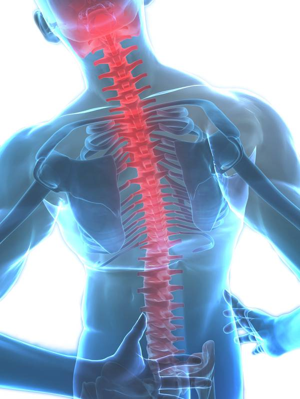 Go Phyiso, a wealth of knowledge in treating back and neck pain